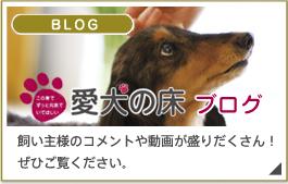 愛犬の床ブログ